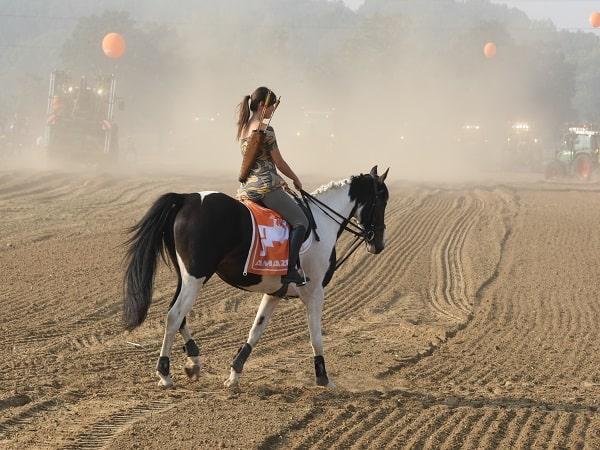 Lý giải điềm báo mơ thấy cưỡi ngựa mang đến những ý nghĩa gì?